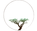 sustainablefaithlogo